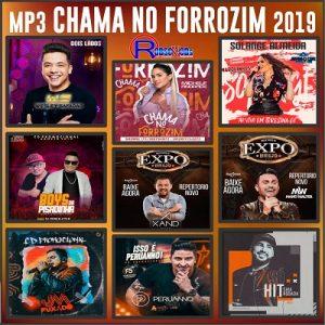 BAIXAR MP3 - Chama No Forrozim 2019